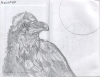 another_bird_web