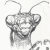 mantis_web