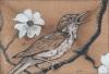 nightingale-web