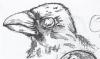 raven_1_web_detail