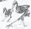 raven_3_web_detail